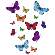 Rainbow Butterflies T-Shirt | Spreadshirt